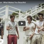 【歌】8.8億万回再生!世界的ヒット!One DirectionのWhat Makes You Beautiful