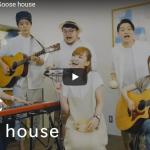 【歌】37万回再生!グースハウスのMUSIC ~涙の虹~が心が爽やかに明るくなるオリジナルナンバーだ!
