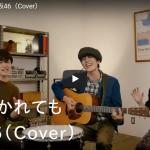 【歌】112万回再生!グースハウスが歌う欅坂46の風に吹かれてもがリズミカルに爽やかにノリノリになる歌に!