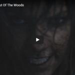 【歌】1.4億万回再生!テイラー・スウィフトの恋愛の不安を歌ったOut Of The Woodsが共感を呼び世界でヒットした心に響く歌!