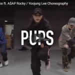 【ダンス】33万回再生!Yoojung Leeがラッパー エイサップ・ファーグのPupsで神罹ったキレキレダンスが熱!