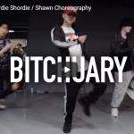 【ダンス】21万回再生!Shawnがショーディー・ショーディーでBitchuaryでクールに熱いダンスを踊る!