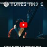 【歌】1184万回再生!トーンズ・アンド・アイのDANCE MONKEYのピアノの語り引きも心に響く歌だ!
